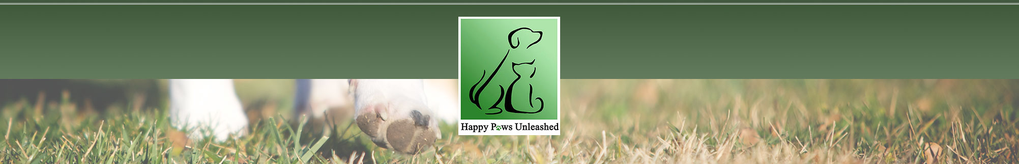Dog Grooming Academy Happy Paws Unleashed